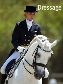 Dressage Page link