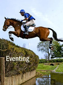 Eventing Page link